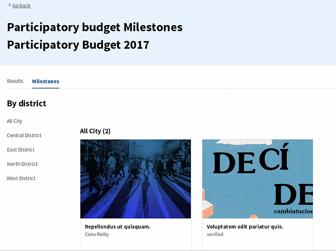 Budget executions